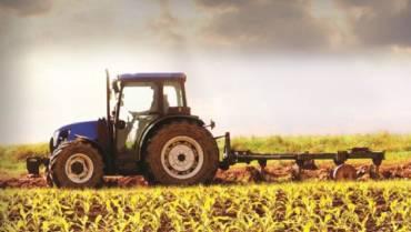 Seguro agrícola ameniza perdas da 2ª safra de milho e indeniza produtores rurais do Mato Grosso do Sul (MS)